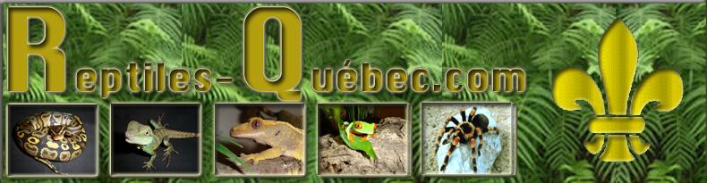 Reptiles Québec