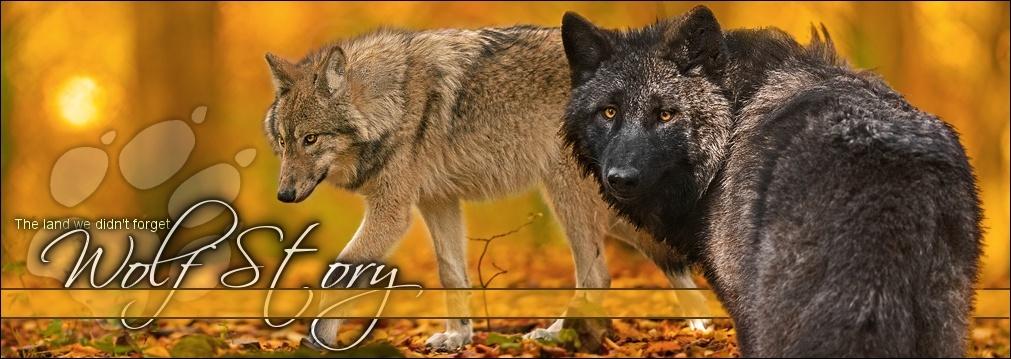 Wolf Story