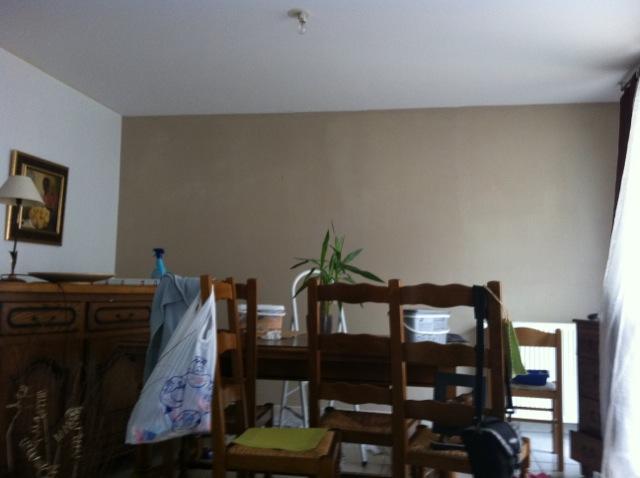 Sandrah51 conseils peinture salon s jour page 2 - Conseils peinture salon ...