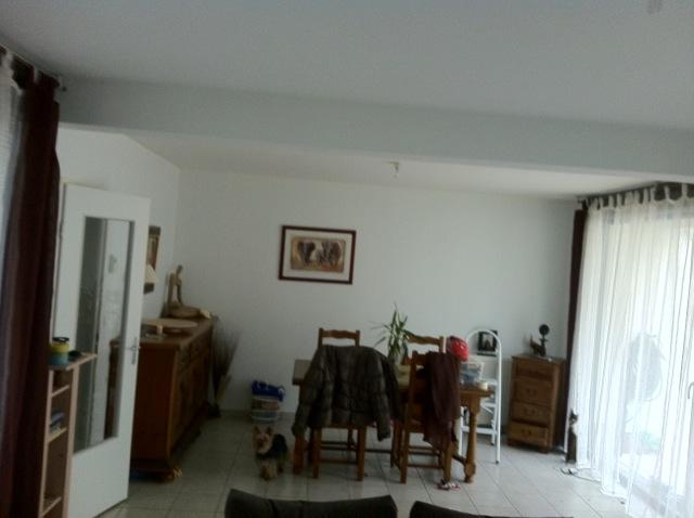 Sandrah51 conseils peinture salon s jour - Conseils peinture salon ...