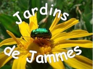 Forums des Jardins de Jammes
