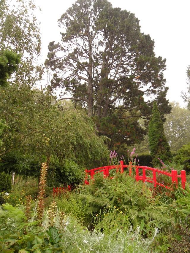 Le jardin botanique de bayonne for Jardin botanique 78