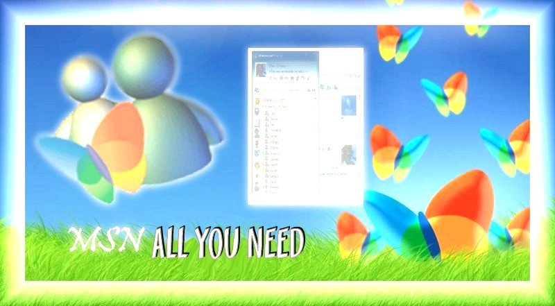 MSN All you Need