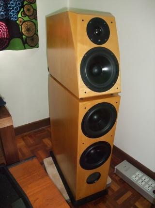 Von Schweikert Vr4jr Floor Standing Speaker Sold