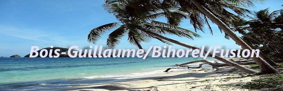 Mairies de Bois-Guillaume et Bihorel