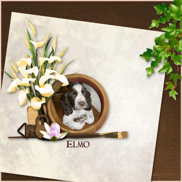 fleurs du mal kit simplette page toupie