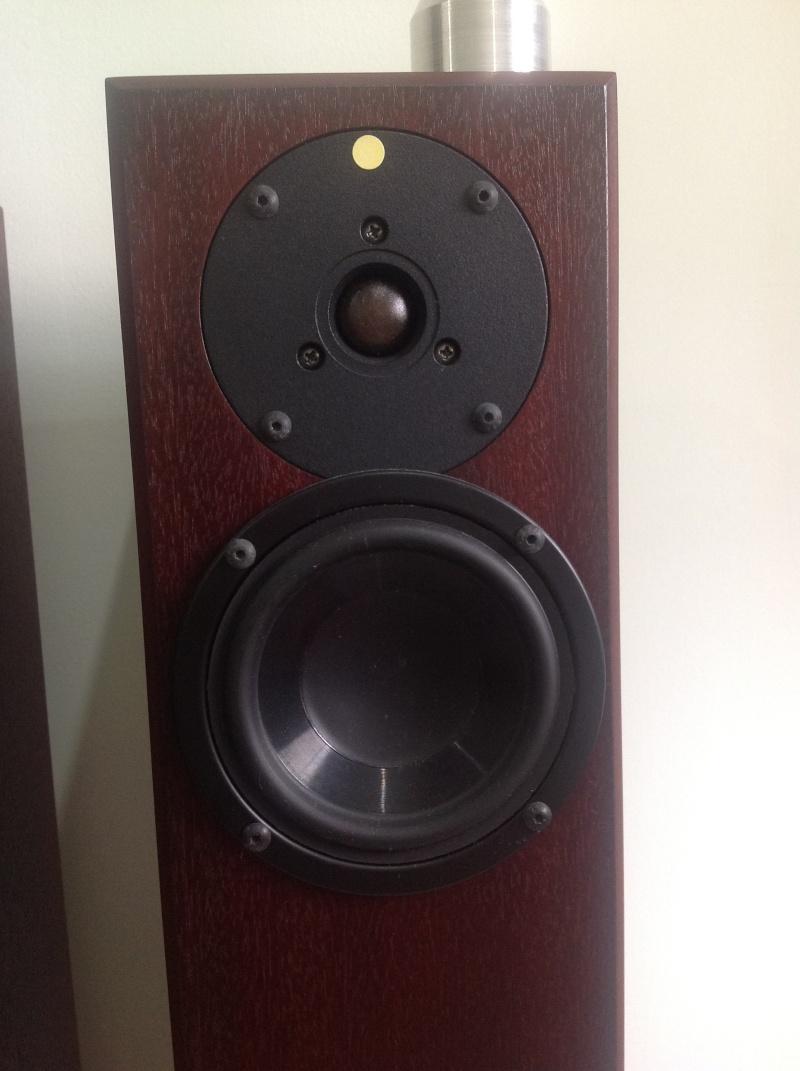 Totem Arro Speakers Used Sold