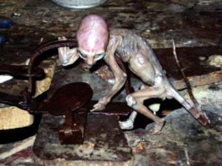 paranormal-canular-Mexique-hoax-fake-James Maussan-singe écureuil commun-Mexique-vidéo de cryptide-Marao Lopez-alien-vidéo-mars 2007-tératologie-taxidermie-Marao Lopez