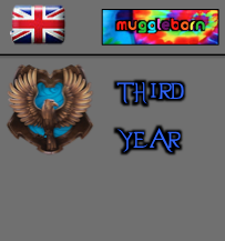 British - Muggleborn - Ravenclaw Third Year