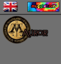British - Muggleborn - Auror