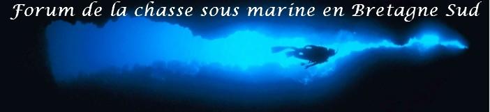Chasse sous marine en Bretagne Sud