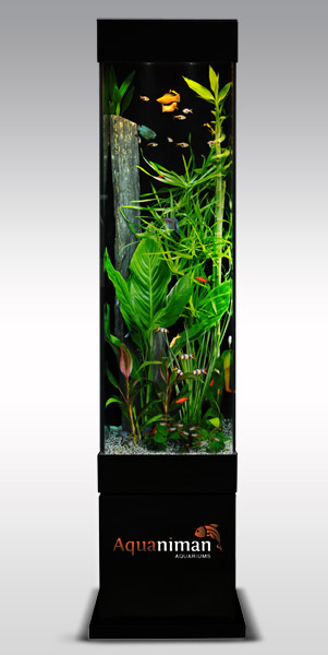 aquarium colonne ronde. Black Bedroom Furniture Sets. Home Design Ideas